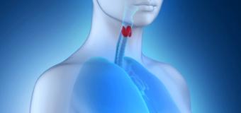 Il selenio e la tiroide: cosa c'è da sapere