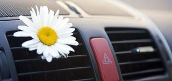 Migliori deodoranti per auto: guida all'acquisto