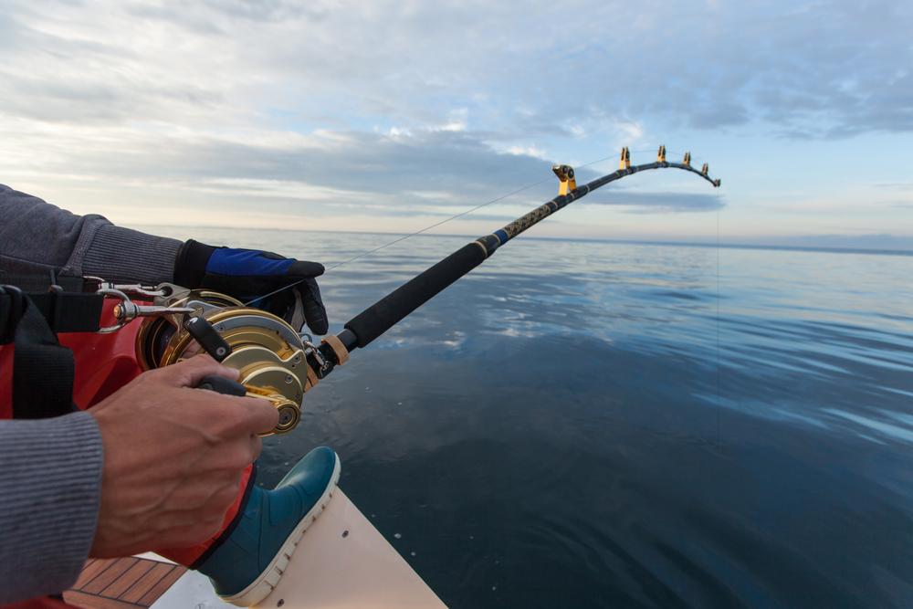 Attrezzatura da pesca