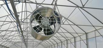 Migliori ventilatori per grandi ambienti: guida all'acquisto