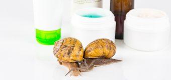 La bava di lumaca e i motivi per cui viene utilizzata nei prodotti cosmetici